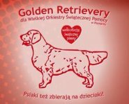 WOŚP. Info od grupy Golden Retriever!